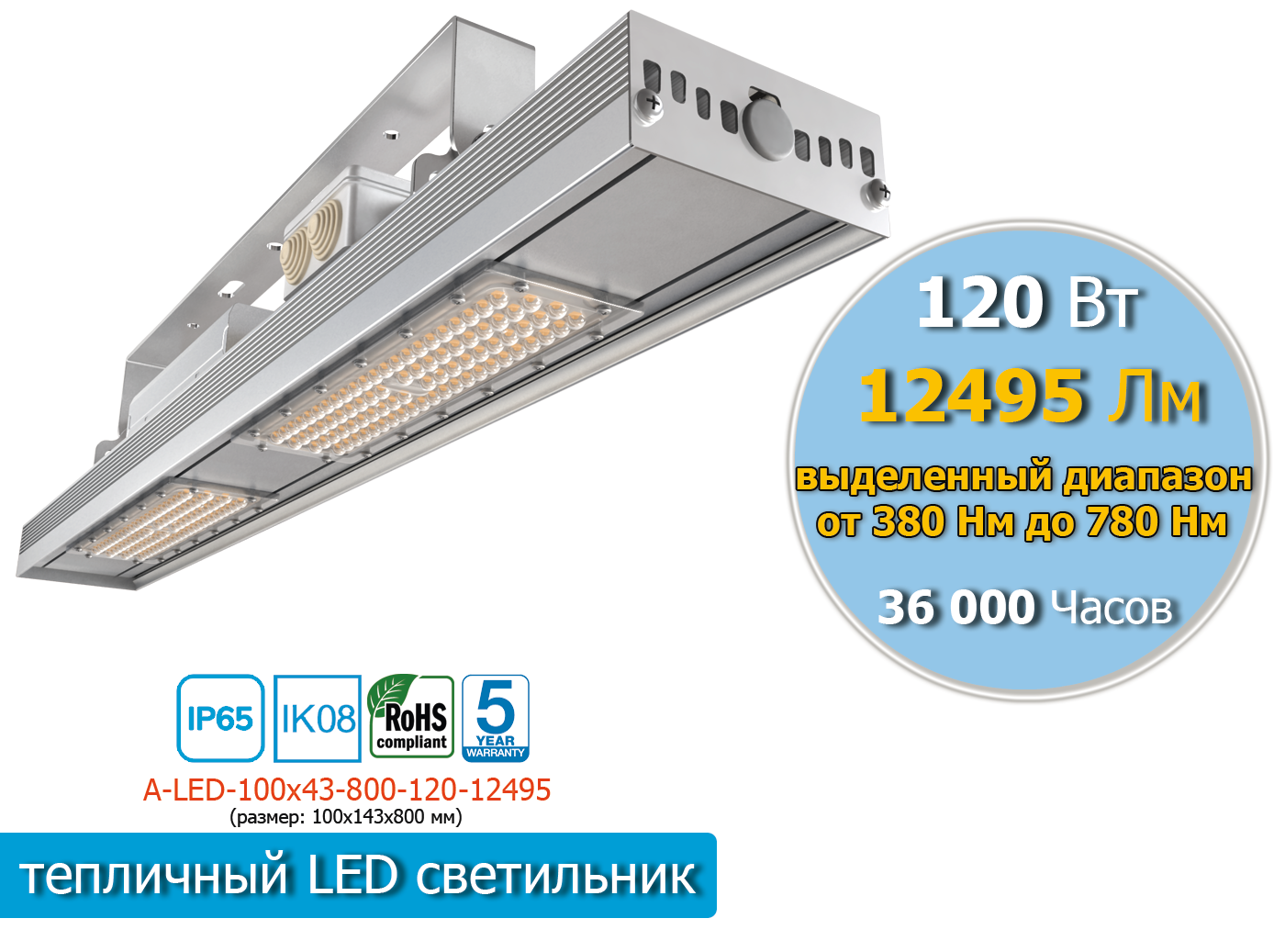 A-LED-100х43-1-800-120-12495